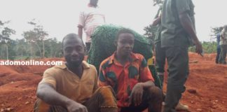 Kwabena Yeboah and Akwasi Yeboah after their arrest