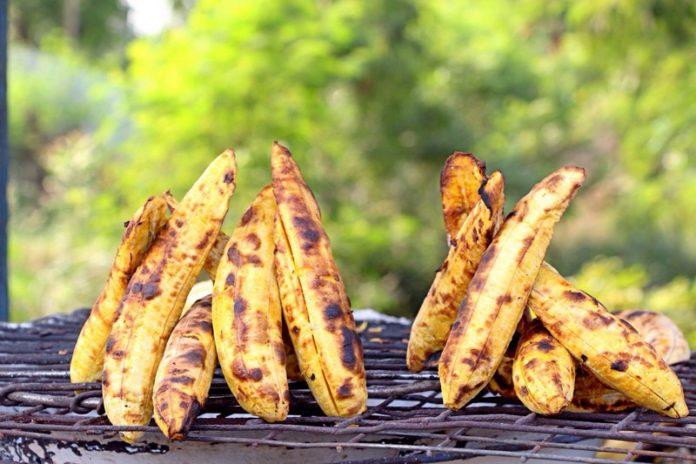 roasted plantain