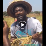 Samini joins made-in-Ghana rice campaign