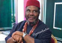Nigerian actor, Pete EdochieNigerian actor, Pete Edochie