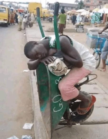 Man sleeping on a wheelbarrow