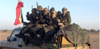 Chad's army has been battling Boko Haram for five years