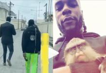 Burna Boy and his monkey