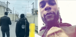 Burna Boy and his monkey