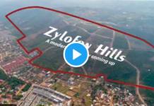 Zallywood City Project
