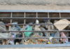 Chocked gutter in Accra / Photo by Angela Elinam Atsu