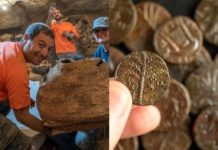 Dozens of fragments of 1,900-year-old biblical scroll and coins found in Judean Desert, along with 6,000-year-old mummy.