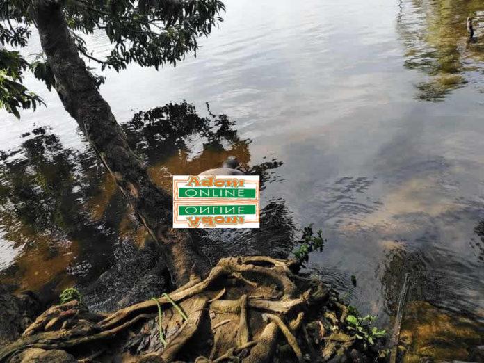 MAN found dead in river